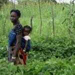 Photo credit: D.Olney/IFPRI and H.Rouamba/HKI Burkina Faso